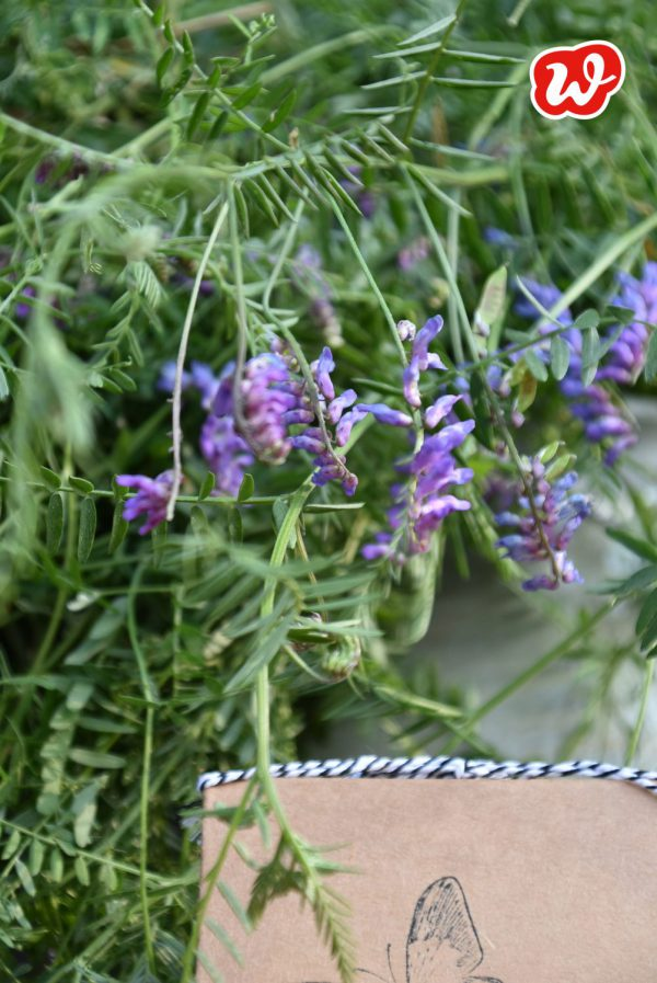 Sommer, Blumen, lila Lupinchen, Schmetterlinghotel, Insektenrettung, insektenfreundliche Gärten, gefertigt in Werkstätten für menschen mit Behinderung, Geschenk, Geschenkideen