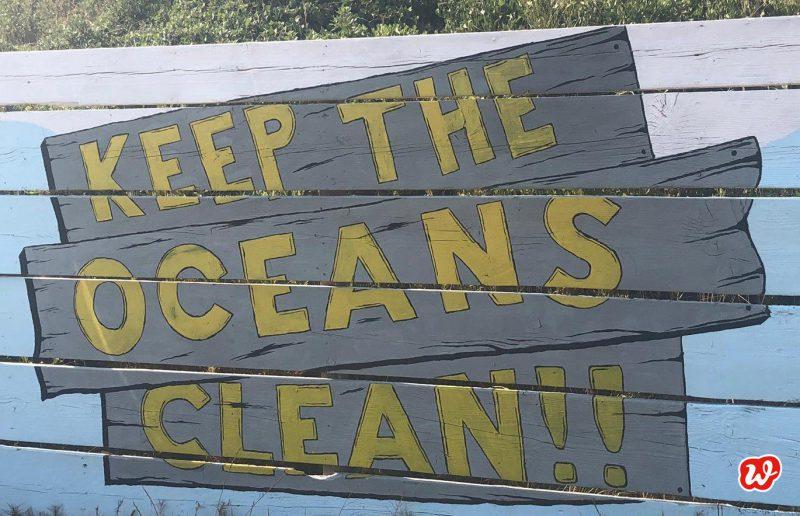 Umweltschutz, Schil, Keep the oceans clean, Sommer, Urlaub