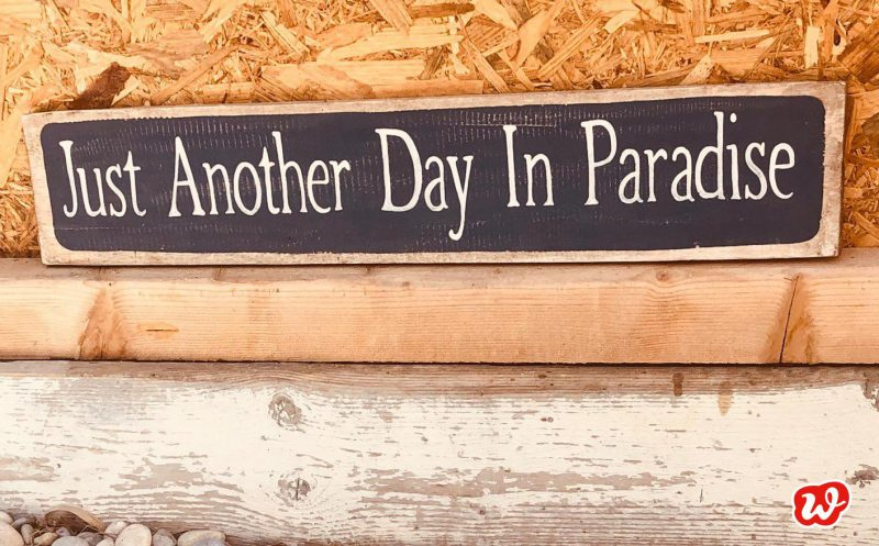 Schild, Another Day in Paradise, Sommermomente, Sommer, Paradies, Urlaub, Spruch, Zitat, Quote