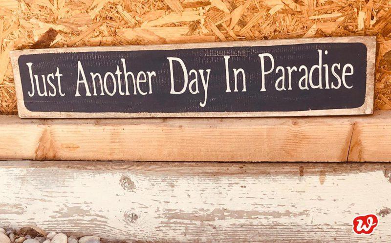 Schild, Another Day in Paradise, Sommermomente, Sommer, Paradies, Urlaub, Spruch, Zitat, Quote