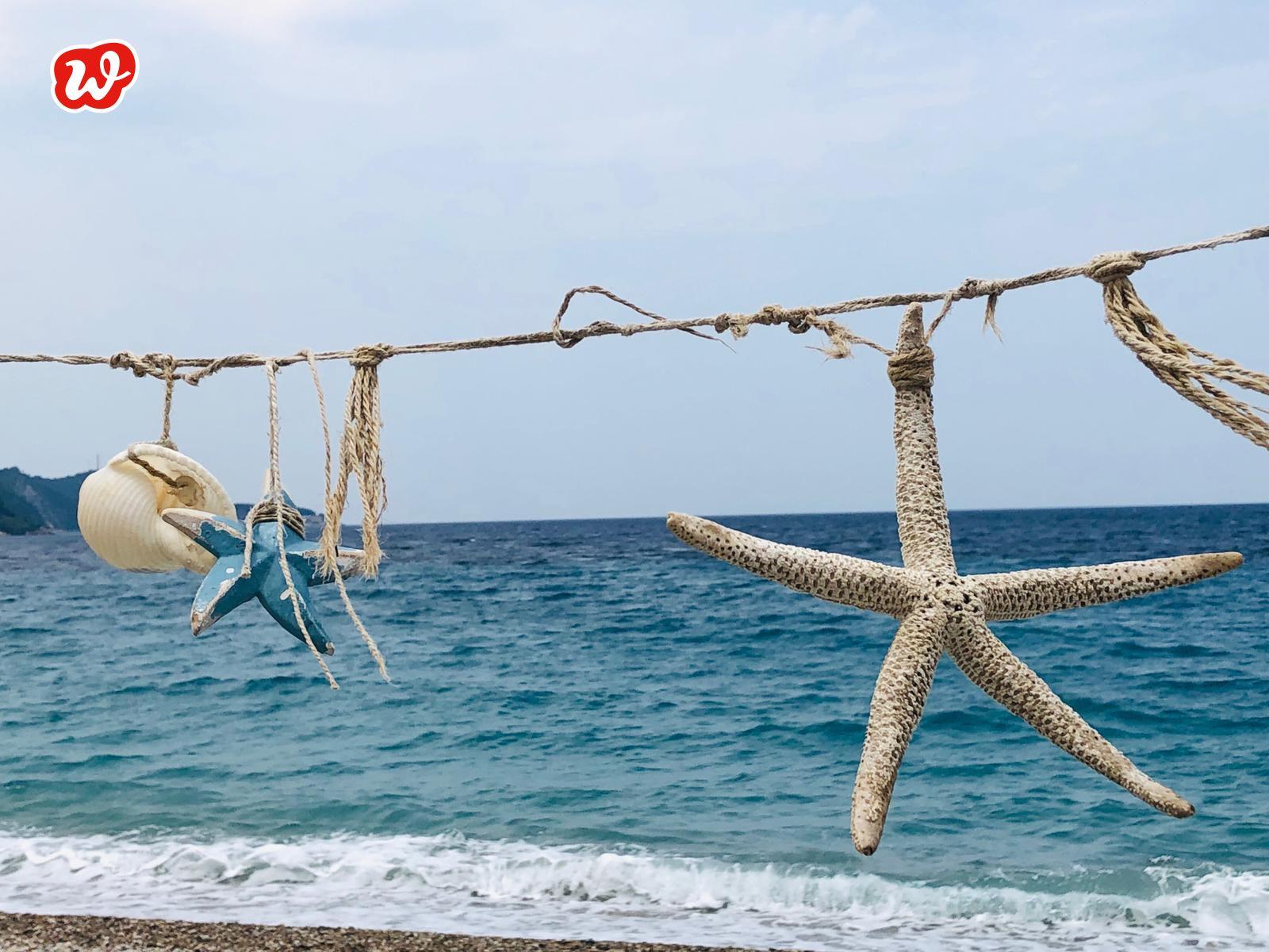 Seesterne, Sommer, Strand, Urlaub, Glücksmomente sammeln