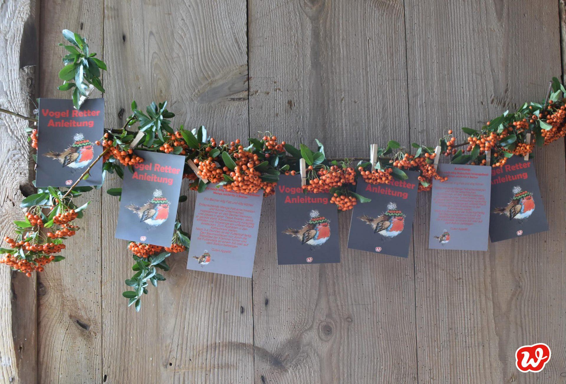 Wunderle Vogelrettung, Vogelfreunde, Vogelfreude, Postkarte, Wunderledetail, Vogelfütterung, Geschenkideen, gefertigt in Werkstätten für Menschen mit Behinderung, Kleinigkeit, DIY