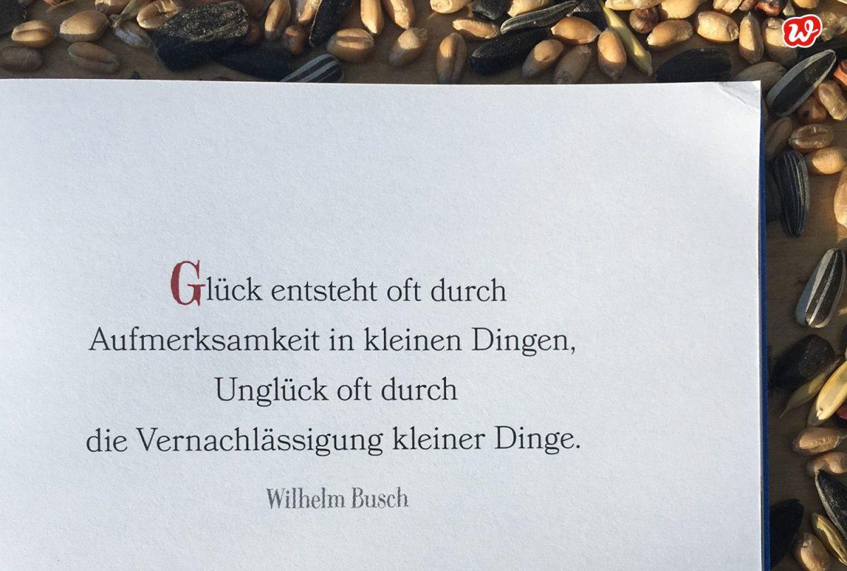 Zitat Wilhelm Busch, Statement, Quote, die kleinen Dinge
