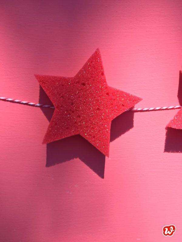 Sternchenschwamm vor pinkem Hintergrund