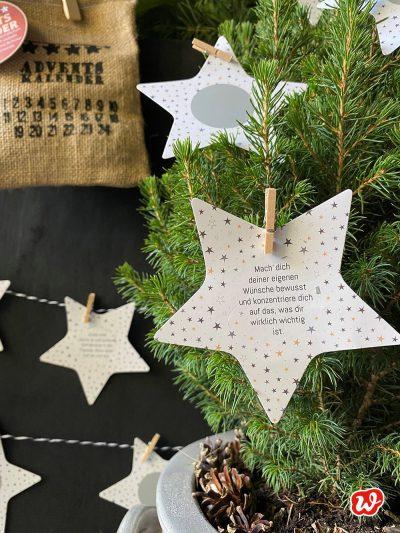 Wunderle Sternrubbelkarte an Tannenbaum