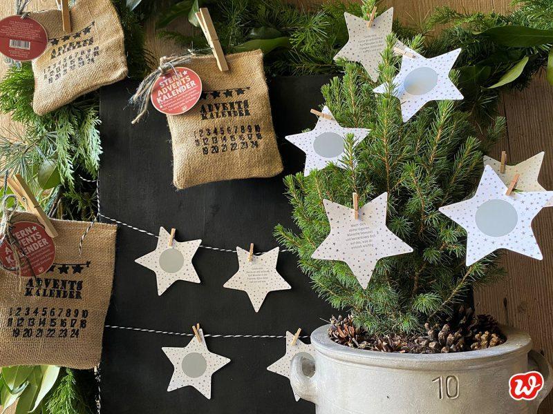 Wunderle Sternadventskalender, 3 Modelle erkennbar, Tannenbaum mit Rubbelsternen behängt