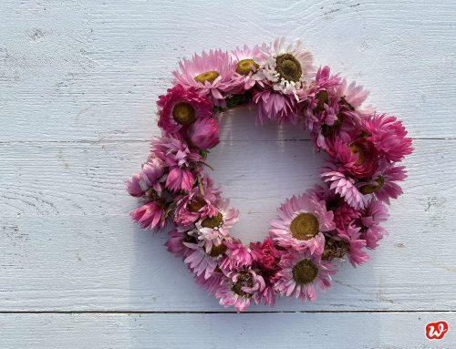 Konfetti für graue Wintertage – DIY Trockenblumenkränze