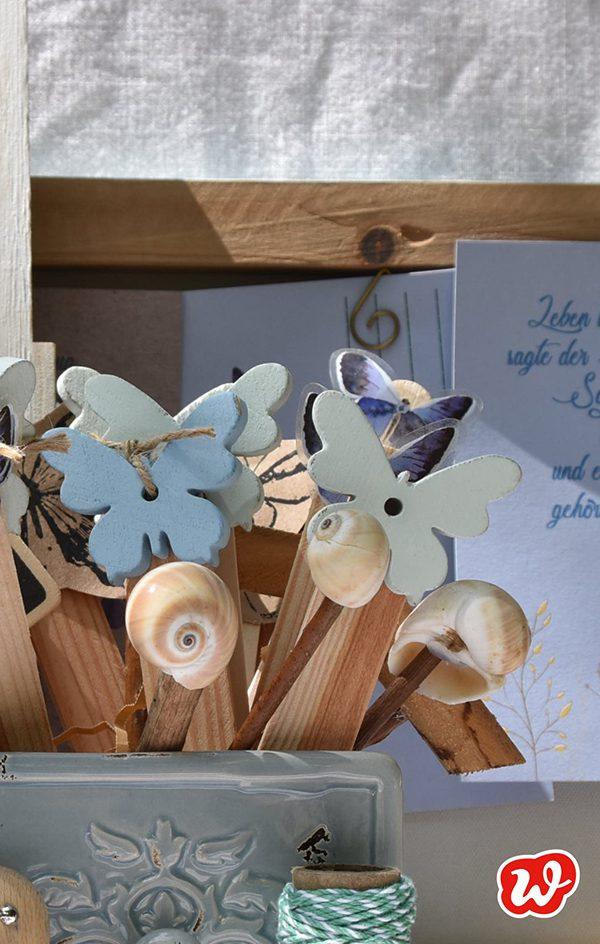Schmetterlingspflanzenstecker und Muschelstecker in blauer Schublade