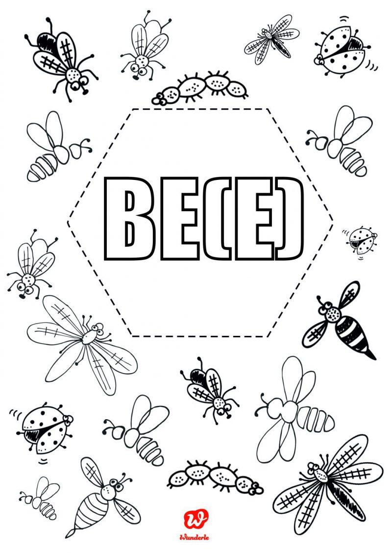 Insektenfreebie