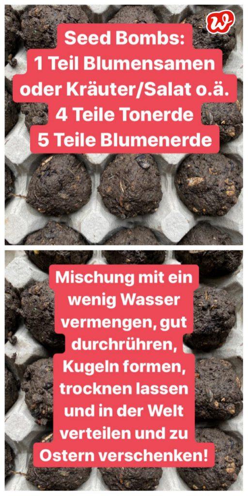 Wunderle Seed Bombs Anleitung
