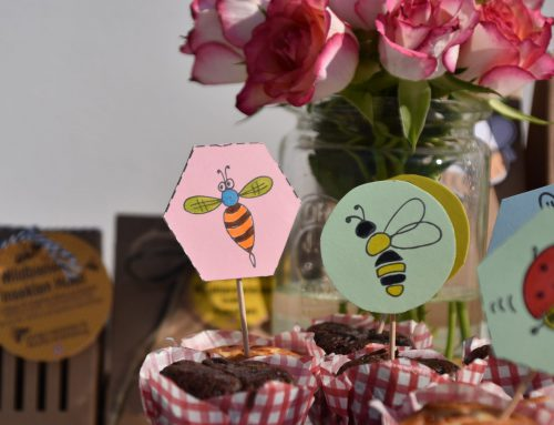 Malvorlagen für kleine Zuhausebleiber – Insekten zum ausmalen und ausschneiden