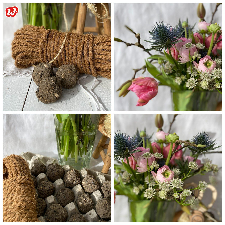 Wunderle Collage Seed Bombs und Frühlingsstrauß