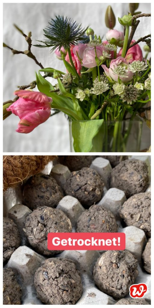 Collage Frühlingsstrauß und Seed Bombs getrocknet