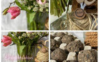 Blumen- und Seed Bombs Collage