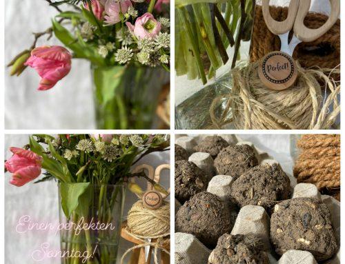 Seed Bombs und Sonntagsgruß – tolles DIY für Blumenliebhaber