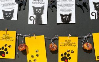 Wunderle Katzen- und Hundepostkarten