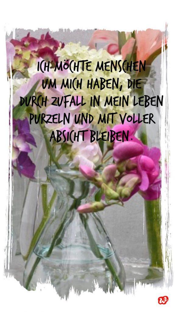 Wunderle Quote Freundschaft auf Blumenmit