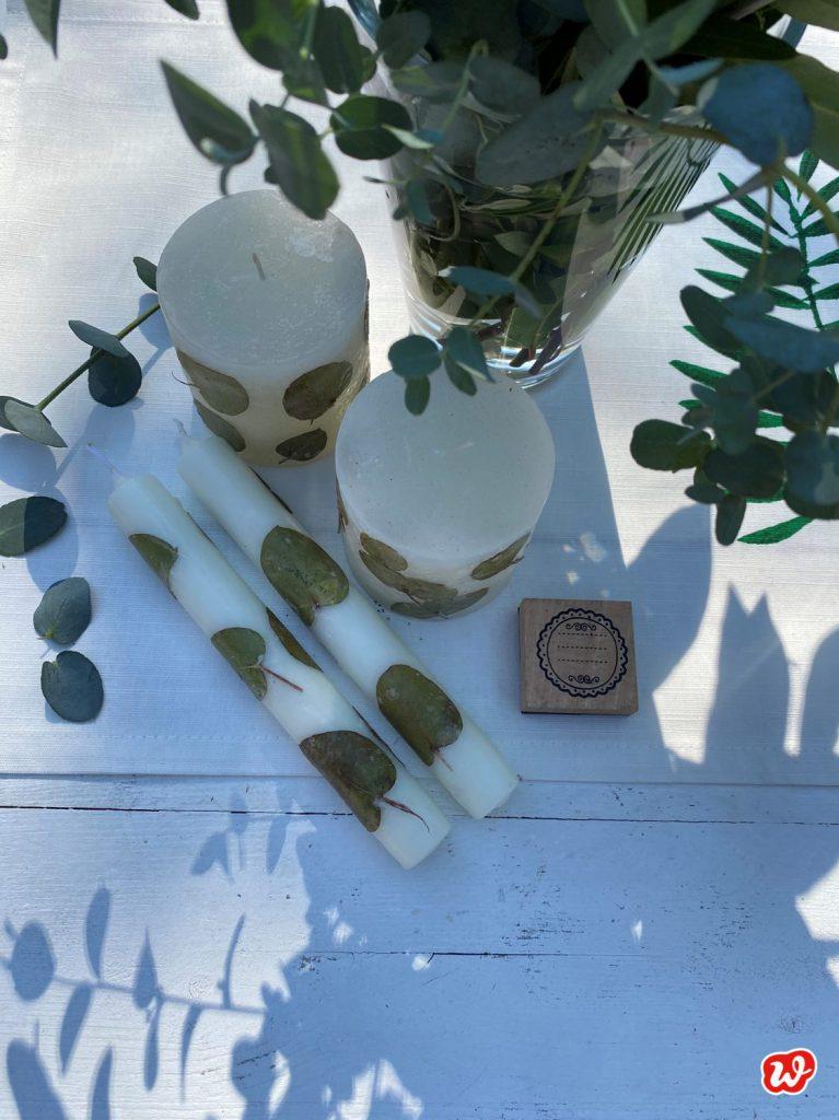 Eupalyptuskerzen selbst gefertigt