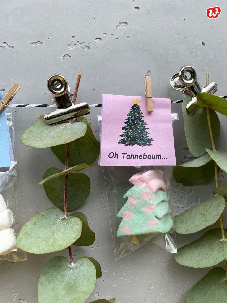 Süße Tüte Oh Tannenbaum zwischen Eukalyptus