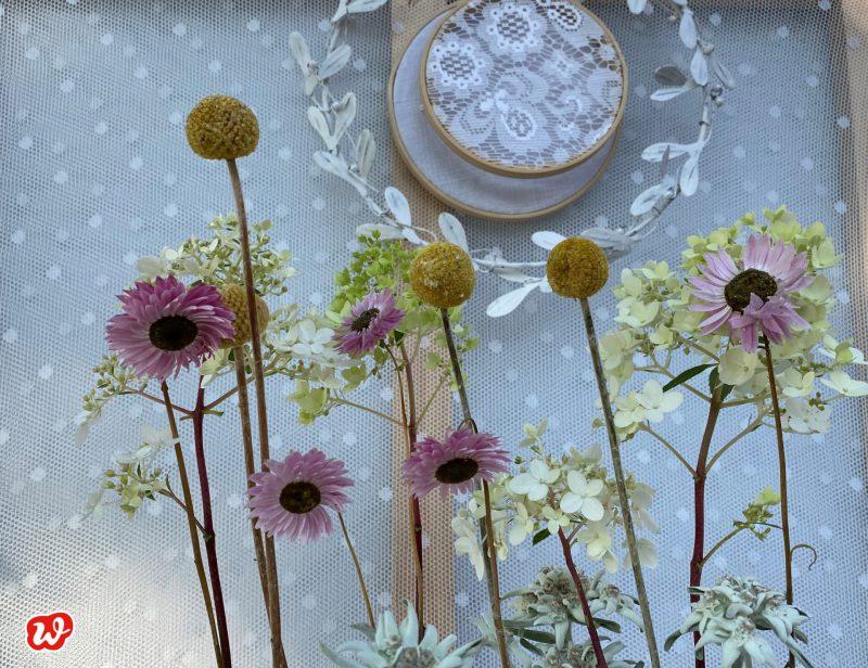 Stehende Trockenblumen vor Stickrahmen