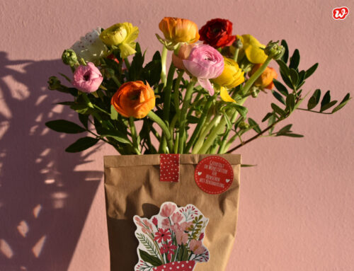 Garantierte Glücklichermacher: Blumen – Wunderblumen to grow, das langhaltige Vergnügen!