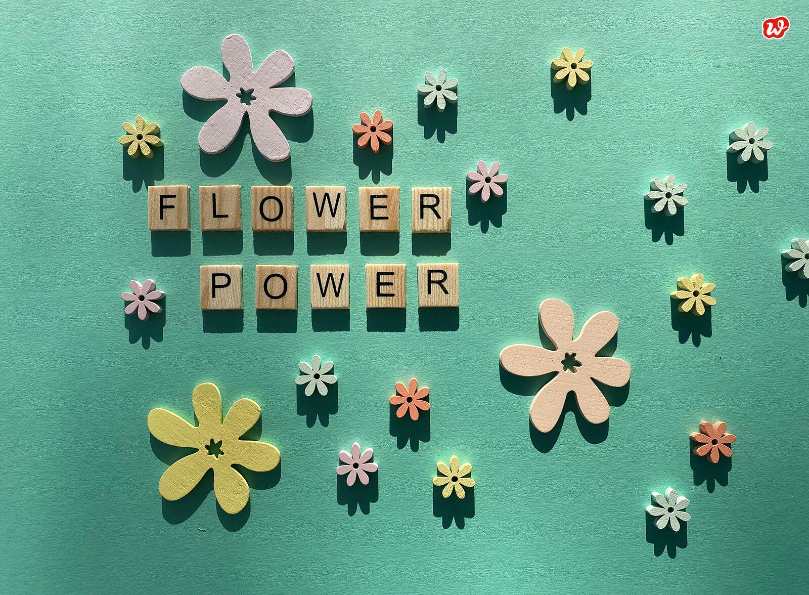 Flowerpower türkis