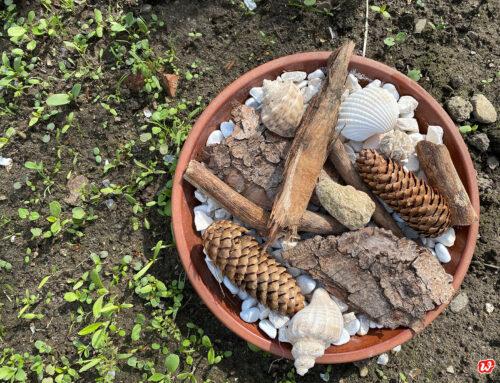 Summsummherum, auch Bienen haben Durst und eine DIY-Bienentränke macht den Garten noch bienenfreundlicher