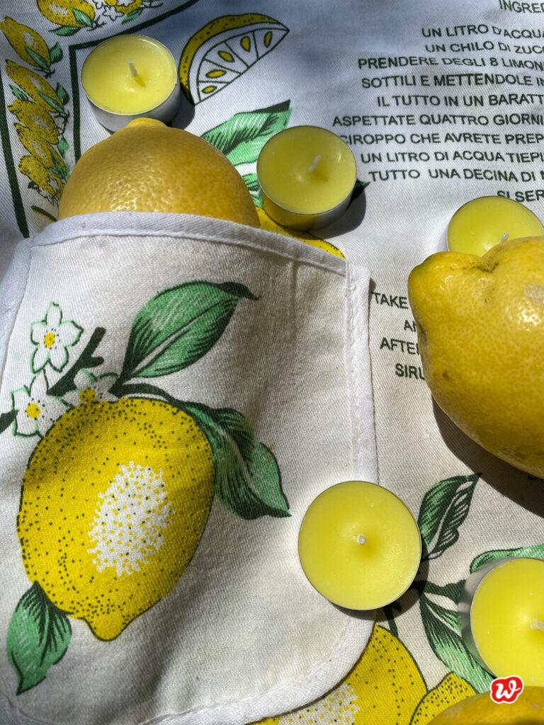 Zitronella Teelichter